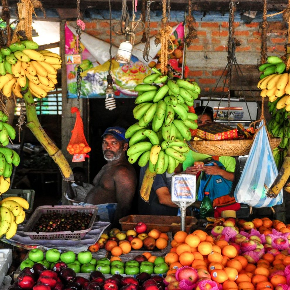 All tropical fruits you can imagine and even some you can't