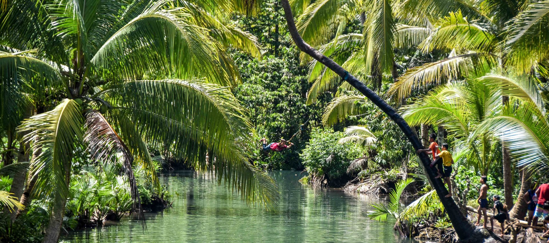 Swinging from a palm tree is extremely fun, the local kids will show you how.