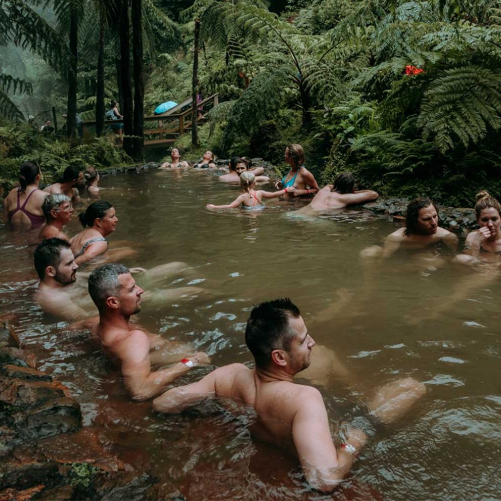 The thermal baths in a Jurassic Park scenery are the perfect place to chill.