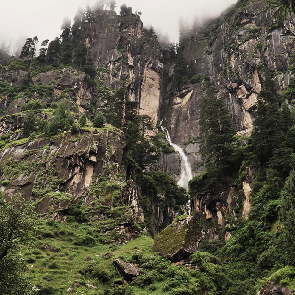 The landscape in Manali is a mix of rainforest with giant pine trees.