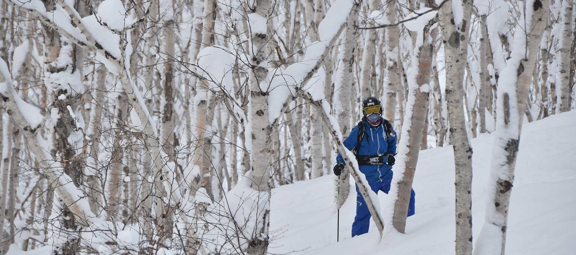 Birch forest trails provide the best natural slalom track.