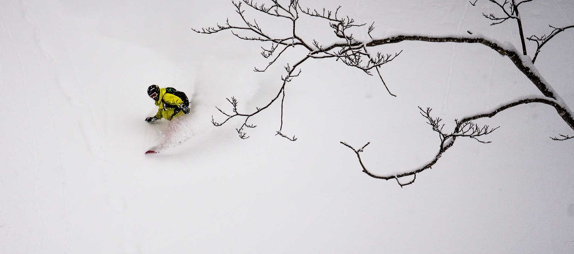 Just glide in the powder snow and make every turn look perfect.