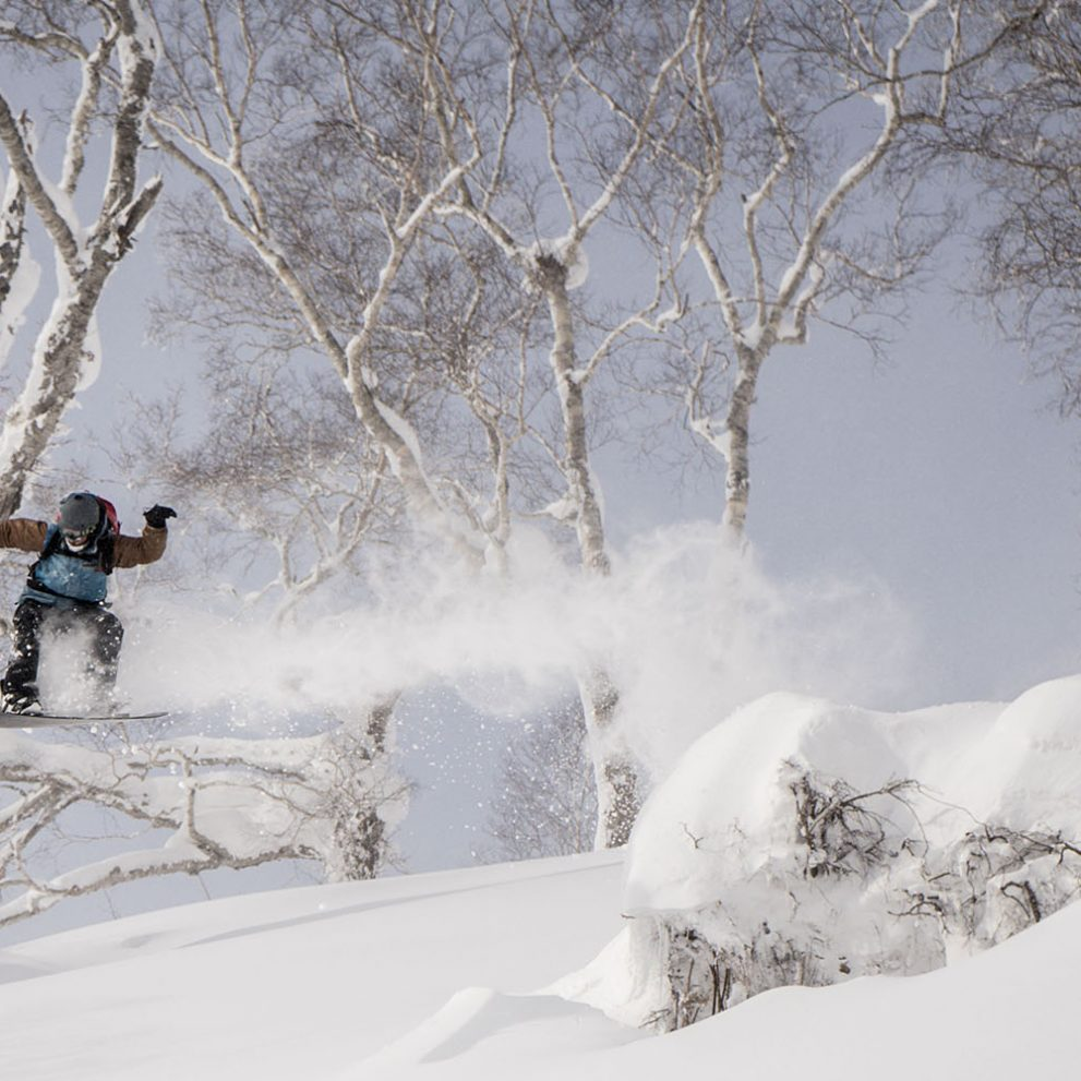 A fallen birch tree is the best version of a natural kicker, you can hit it as hard as you want and land in the softest snow in the world.