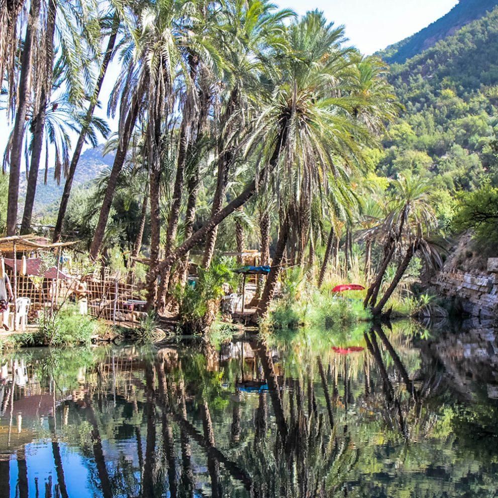 A drive through the Atlas Mountains will take us to Paradise Valley, this spot is famous for its natural beauty with an abundance of palm trees.